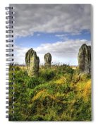 Song Of The Stones Spiral Notebook