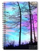 A Day With Dancing Lights Spiral Notebook