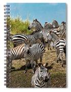 A Dazzle Of Zebras Spiral Notebook