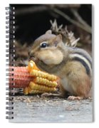 A Delicious Treat - Chipmunk Eating Corn Spiral Notebook