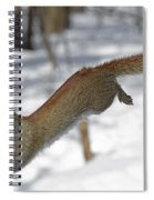 A Devil Named American Red Squirrel Spiral Notebook