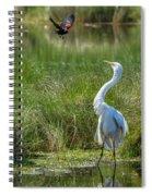 A Disagreement At The Pond Spiral Notebook