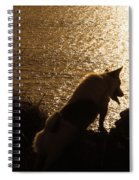 A Dogs View Spiral Notebook