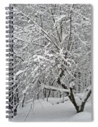 A Dogwood Sleeps While The Snow Falls Spiral Notebook