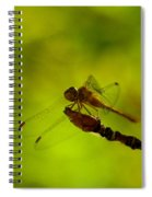 A Dragonfly Smile Spiral Notebook