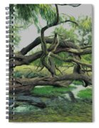 A Dramatic Change Of Perspective Spiral Notebook