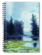 A Dreary Day At The Pond Spiral Notebook