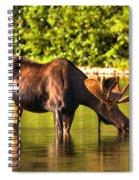 A Drink At Fishercap Spiral Notebook