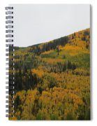 A Drive Throw The Forest In The Fall Spiral Notebook