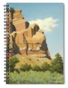 A Face In New Mexico Spiral Notebook