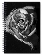 A Fading Rose Spiral Notebook