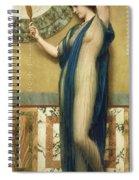 A Fair Reflection Spiral Notebook
