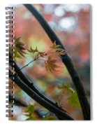 A Falls Colors Spiral Notebook