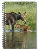 A Family Affair Spiral Notebook