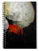 A Fancy Home Spiral Notebook