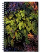 A Fern Botanical By H H Photography Of Florida Spiral Notebook