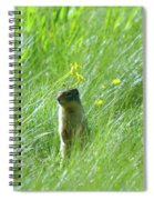 A Fernie Gopher  Spiral Notebook