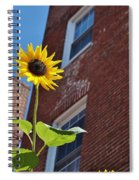 A Field Of Her Own Spiral Notebook