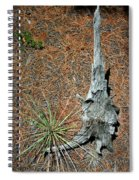 A Fine Pair Spiral Notebook