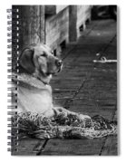 A Fisherman's Best Friend Spiral Notebook