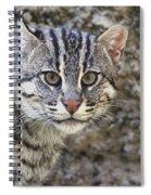 A Fishing Cat Portrait Spiral Notebook