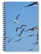 A Flock Of Seagulls Spiral Notebook