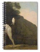 A Foxhound Spiral Notebook