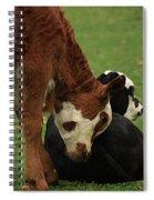 A Friend Indeed Spiral Notebook