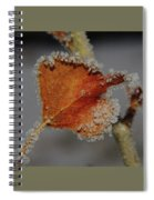 A Frosted Leaf  Spiral Notebook