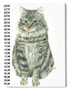 A Furry Cat  Spiral Notebook