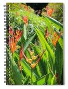 A Garden Paradise Spiral Notebook