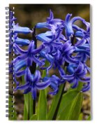 A Gathering Of Blues Spiral Notebook