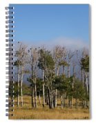 A Gathering Of Crows Spiral Notebook