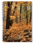 A Golden Autumn Forest  Spiral Notebook