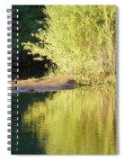 A Golden Reflection Spiral Notebook