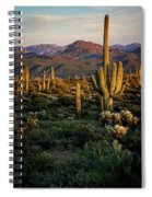 A Golden Sonoran Evening  Spiral Notebook