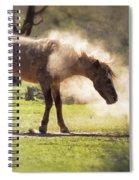 A Good Dust Bath  Spiral Notebook