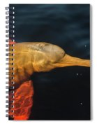 A Graceful Turn Spiral Notebook