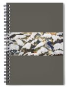 A Gray Jay Kind Of Day Spiral Notebook