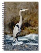 A Great Blue Heron At The Spokane River 2 Spiral Notebook