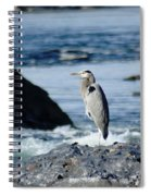 A Great Blue Heron At The Spokane River Spiral Notebook