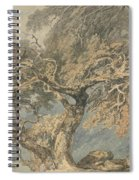A Great Tree Spiral Notebook