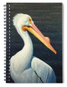A Great White American Pelican Spiral Notebook