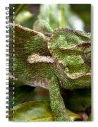 A Green Chamaeleonidae Spiral Notebook