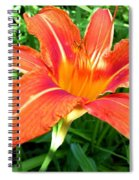 A Grrreat Tiger Lily Spiral Notebook