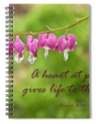 A Heart At Peace Spiral Notebook