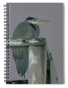 A Heron On Watch  Spiral Notebook