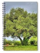A Hill Country Moment Spiral Notebook