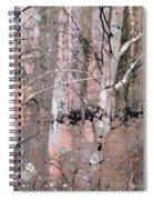 A Hint Of Pink Spiral Notebook