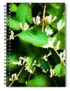 A Honeysuckle Painting Spiral Notebook